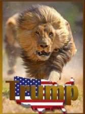 trump-lion-hocspococus