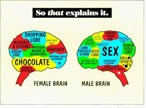 female logic vs male logic