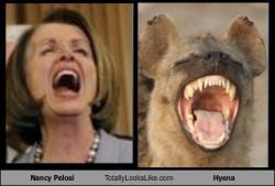 pelosi-hyena