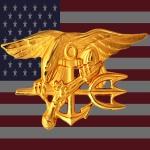 flag-usa-18-800