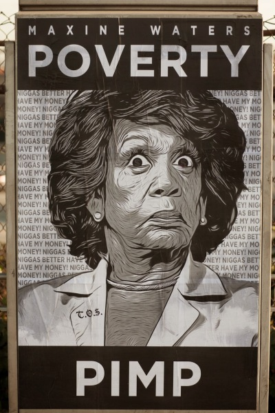 maxine-waters-poverty-pimp-poster-detail