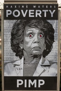 Maxine Waters Poverty Pimp Poster Detail